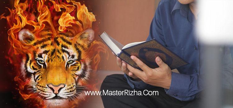 Cara Mengisi Khodam Harimau dengan Al Ikhlas